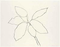 saint martin tropical plant by ellsworth kelly