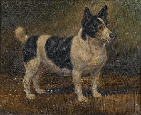 quotbessiequot a corgi by edward aistrop