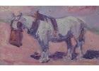 Nosebag for the Grey, 1906
