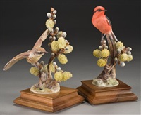 vermillion flycatcher and pussy willow by dorothy doughty