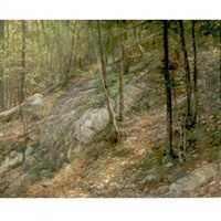 in the woods by william henry lippincott