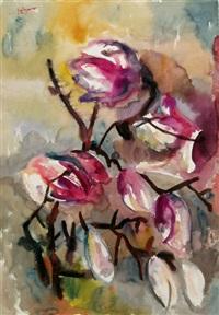 magnolien by heinz tetzner
