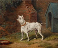 white bulldog before a kennel by dean wolstenholme the younger