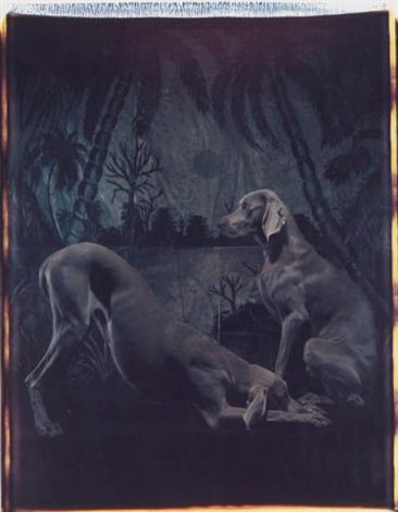 selected images 2 works by william wegman