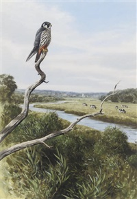 hobby by rodger mcphail