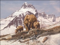grizzly bears by gary r. swanson