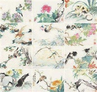 花鸟 (album of 12) by liu deliu