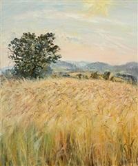 wheat field in wales by tessa perceval
