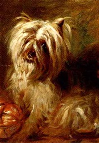 a cairn terrier by robert l. alexander