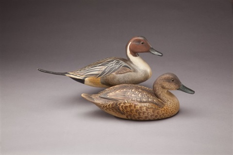 pintail pair by robert bates
