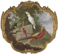 a sulphur-crested cockatoo, a golden pheasant, a cardinal and a toucan in a landscape by jacobus vonck