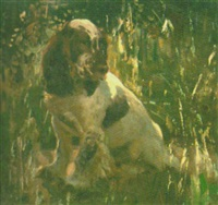 a cocker spaniel by dorothy adamson