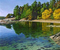 saltspring bay by clayton anderson