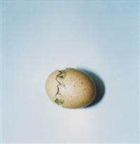 aila (19) by rinko kawauchi
