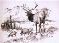 big bull elk by john walter scott