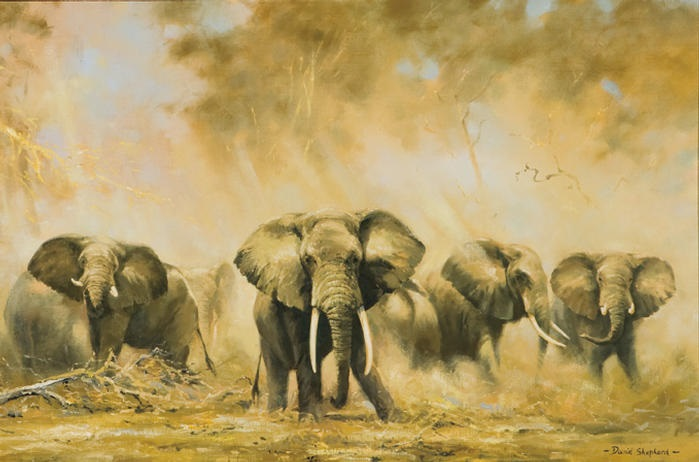 elephants at amboseli by david shepherd