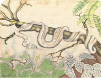a serpent on a branch by agapoff