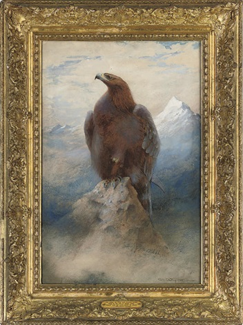 the eagle by charles whymper