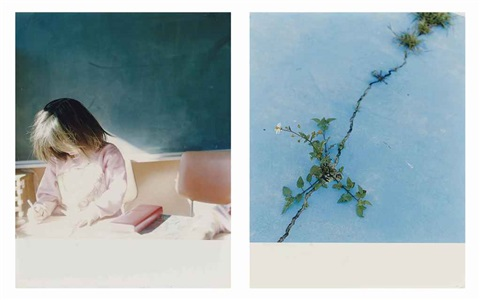 the eyes the ears 17 and 522 works by rinko kawauchi