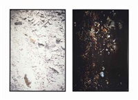 black garbage (grassy island, (canadian)) / white garbage (bob lo island) by mike kelley