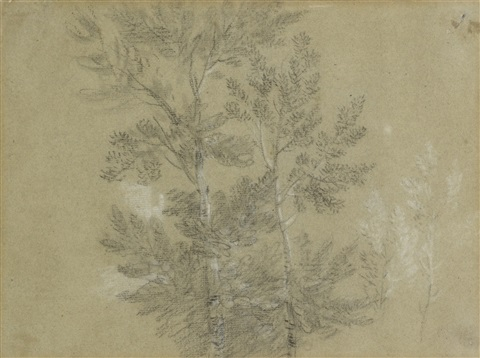 a study of trees by thomas gainsborough