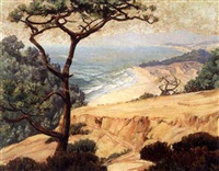 forest wilderness: torry pines of the west coast in california by howard john little