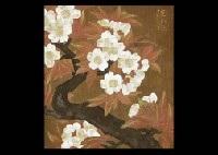 cherry blossoms by kakuji ishikawa