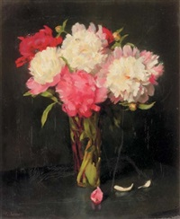 pink and white peonies by franz aumer