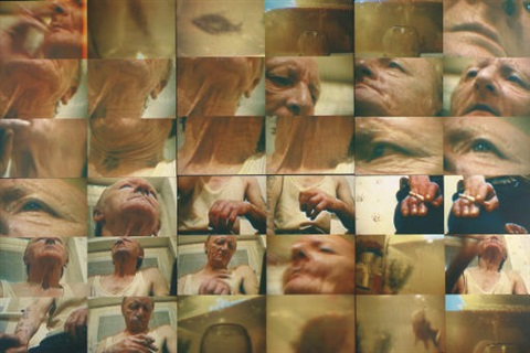 untitled 4 works by richard billingham