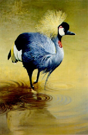 crown crane by paul apps