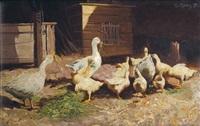 gänseherde auf einem bauernhof by robert von haug