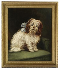 a wheaten terrier by w.j. ophelia billinge