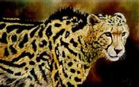 prince among kings (king cheetah) by paul apps