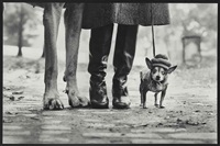new york city by elliott erwitt