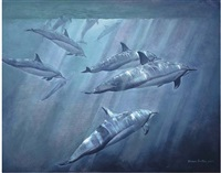 dolphins by khwan barton