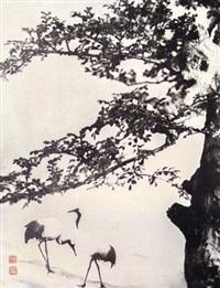 摄松鹤延年 照片 (一张) by lang jingshan