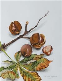 horse chestnuts by patricia jorgensen