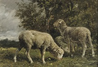 moutons sous un arbre: sheep under a tree by charles jacques