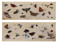 insekten (+ another; pair of studies) by joris (george) hoefnagel