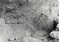 sculptures rupestres by ana mendieta