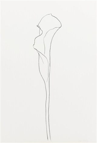 calla lily i and iii 2 works by ellsworth kelly