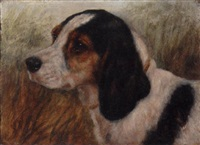 the prize beagle wellington, property of mrs. oughton giles by edward aistrop