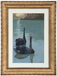 pond scene by apworth adams