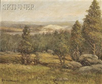 view over a wooded landscape by theodore victor carl valenkamph