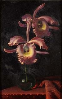 fiori by rino gaspare battaini