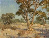 catalina eucalyptus by gregory hull