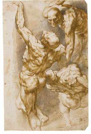 anatomical studies of three male figures by sir peter paul rubens