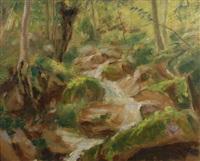 ruscello nel bosco by remo taccani