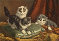 les chatons sur le divan by cornelis raaphorst