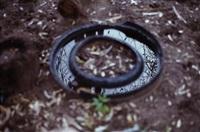 round mirror distance by gabriel orozco